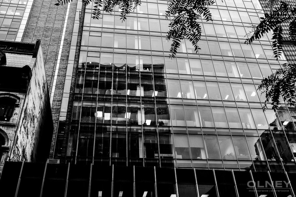 OLNEY-Building on McGill street in Montreal QC street photography olney photographe sherbrooke