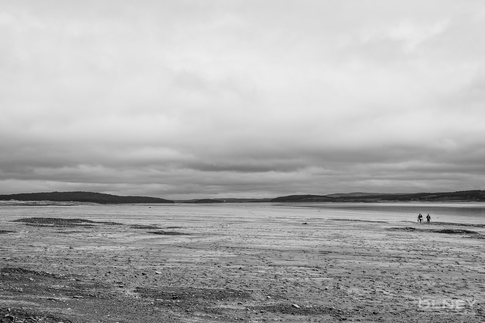Hopewell beach low tide black and white olney photographe sherbrooke