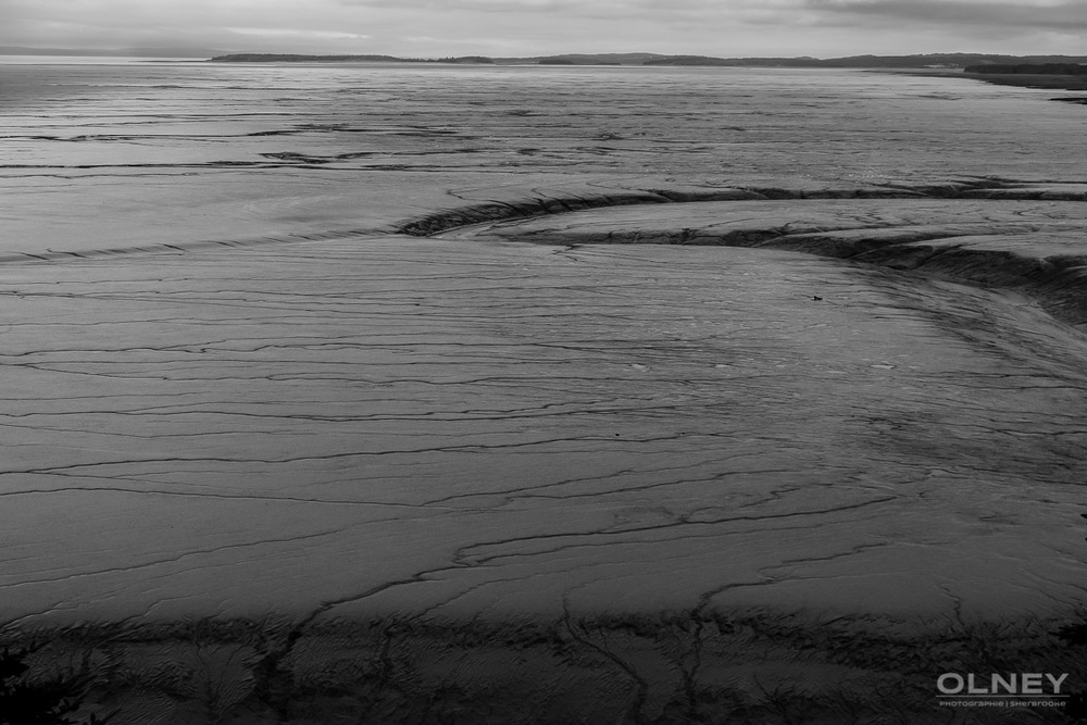 Shepody Bay mudflats black and white olney photographe sherbrooke