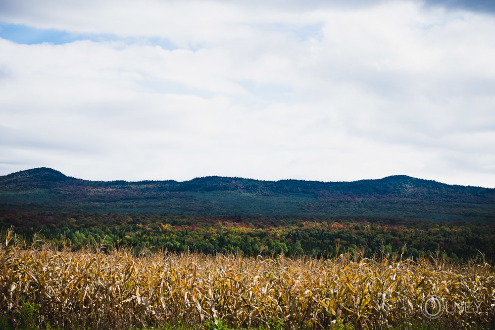 monts de stoke en automne