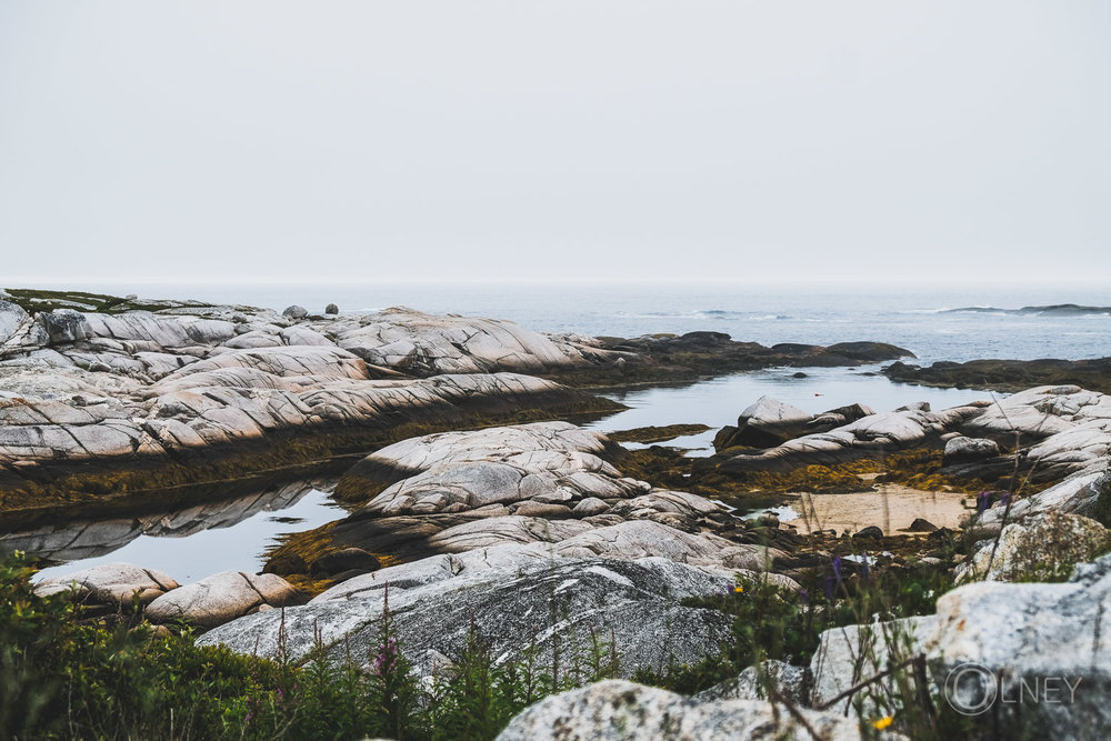 rock and sea at peggy's cove nova scotia