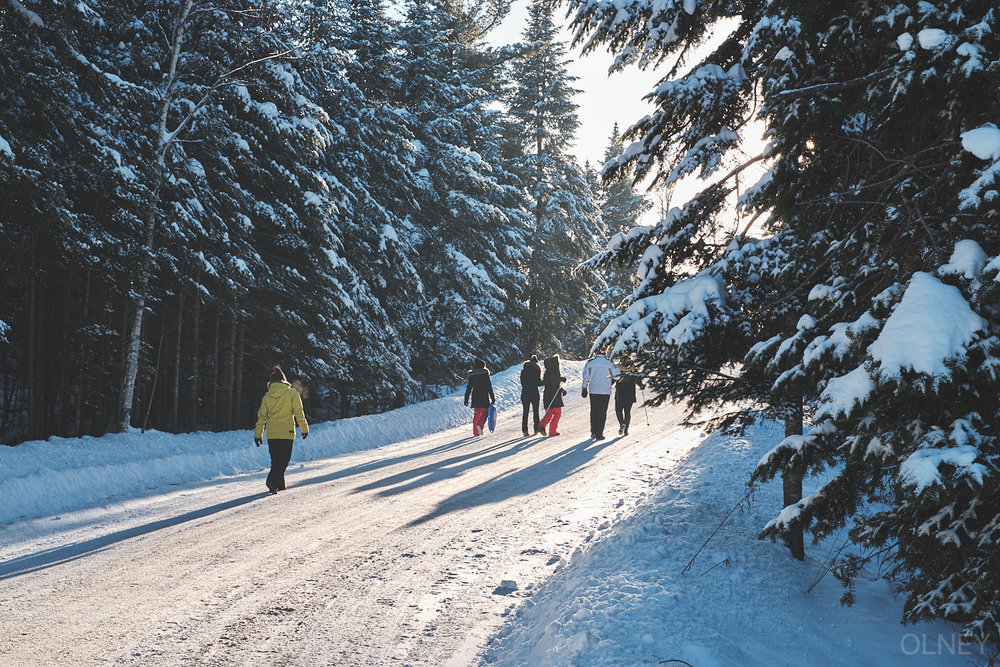 group of people walking in winter