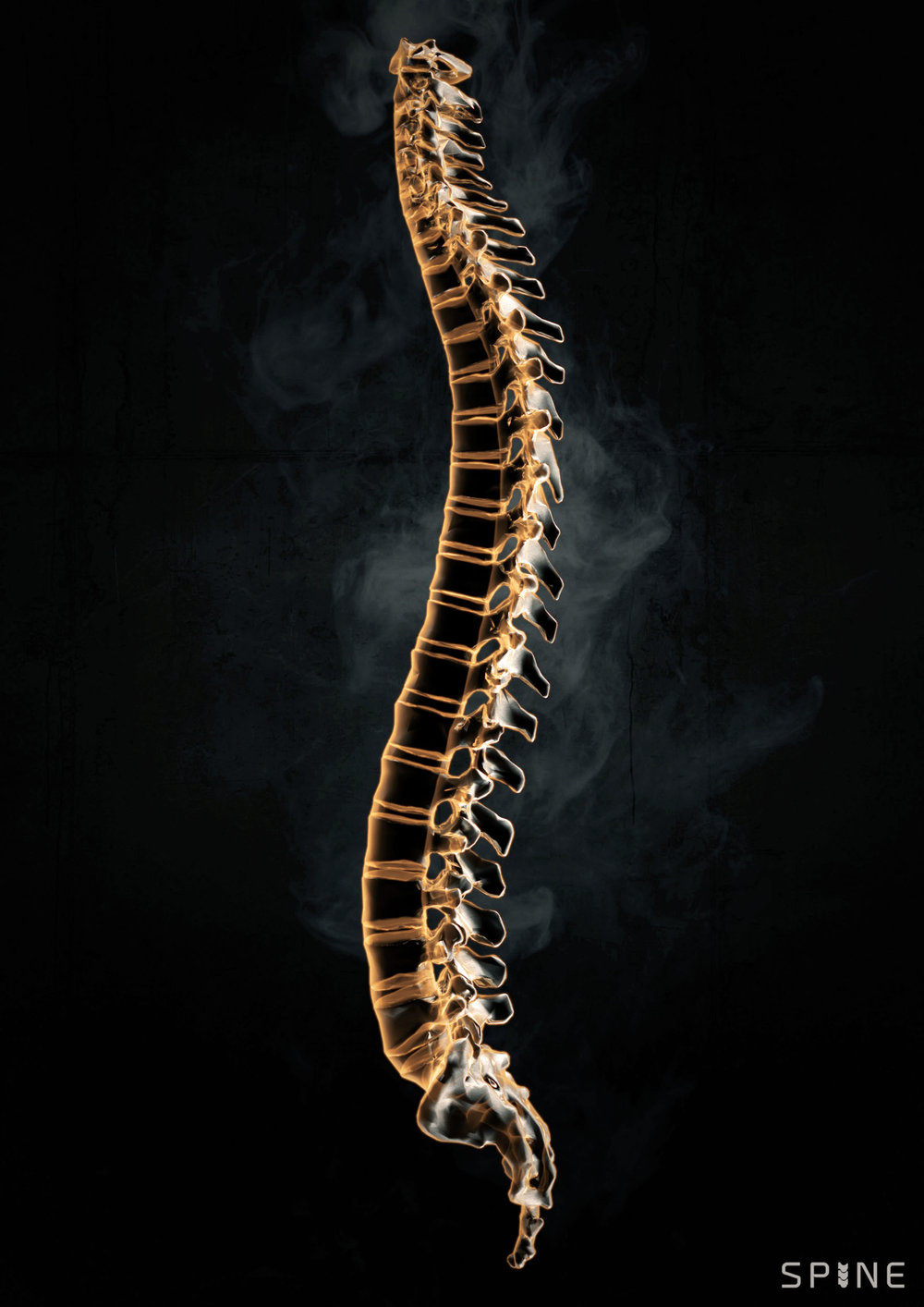 BOOM_CGI_MEDICAL_spine-render.jpg