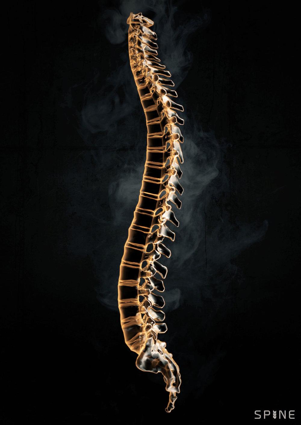 BOOM_CGI_MEDICAL_spine-render.jpg