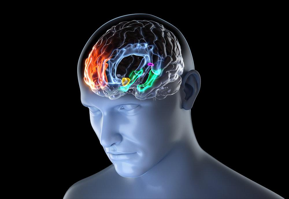 BOOM_CGI_MEDICAL_popular-mechanics-brain.jpg
