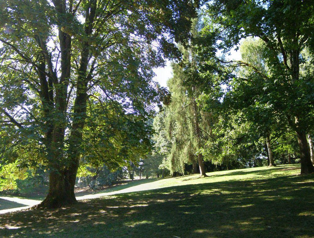 Fernhill Park