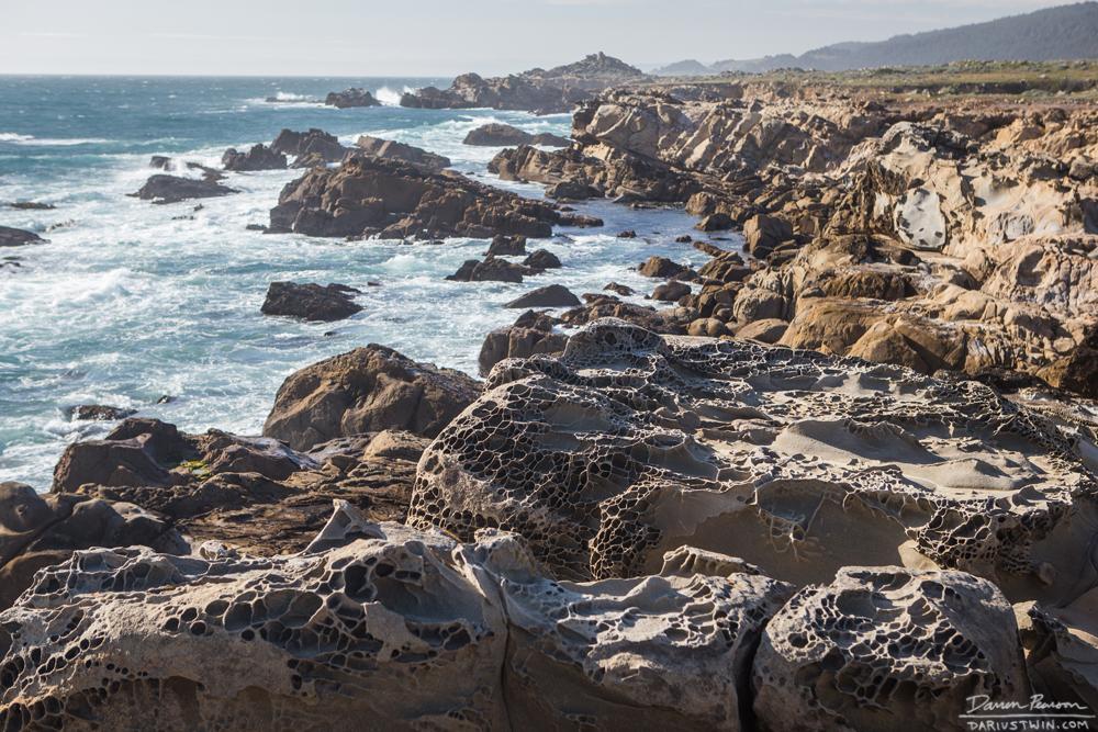 alien coast