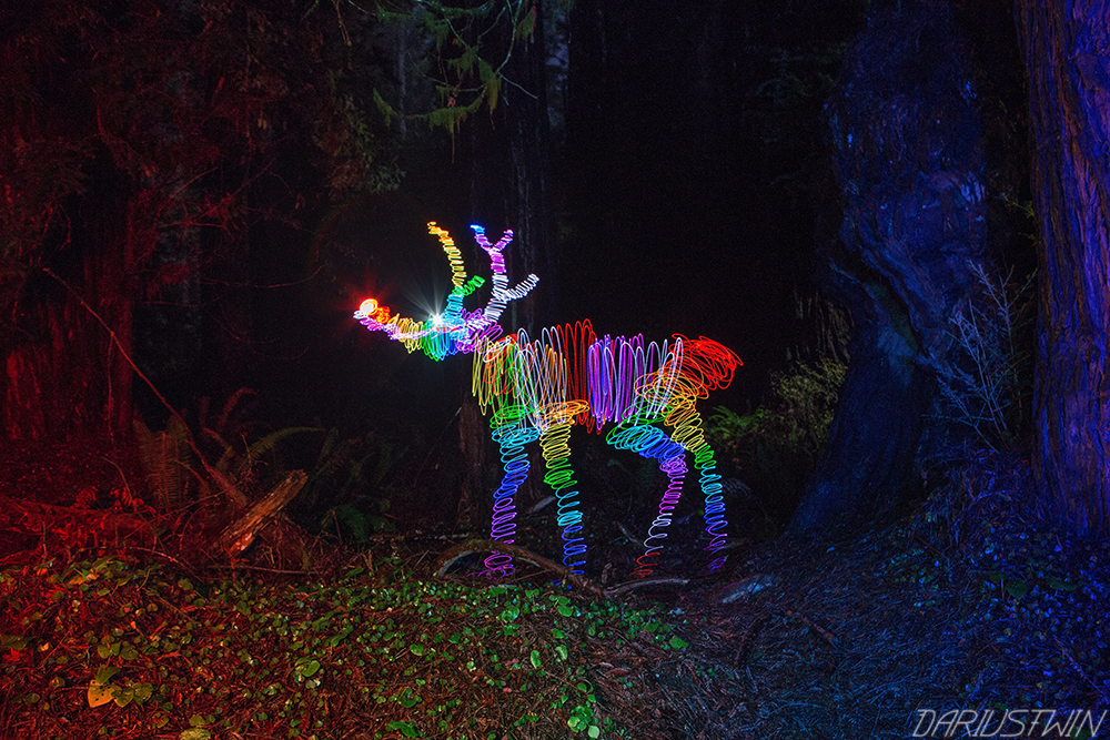 dariustwin � rainbow reindeer