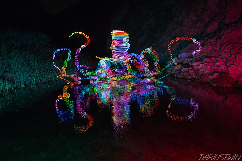 rainbow octopus