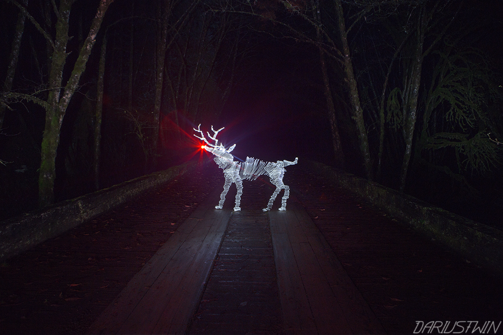 Lost Rudolph