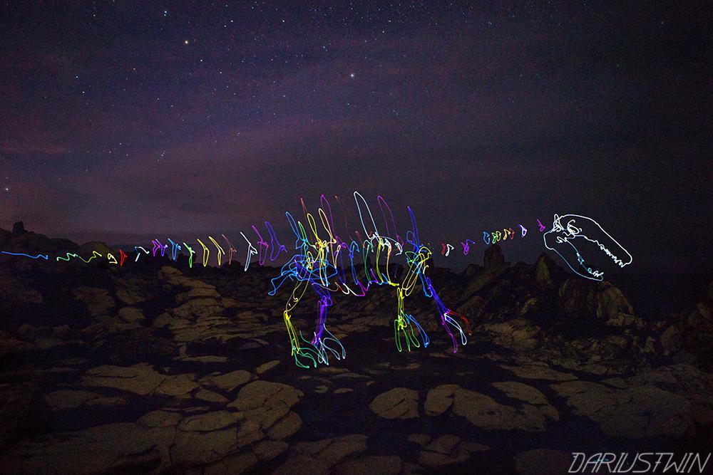 Dragonsteeth, maui, dinosaur, lightfossil, photography, hawaii, lava rock