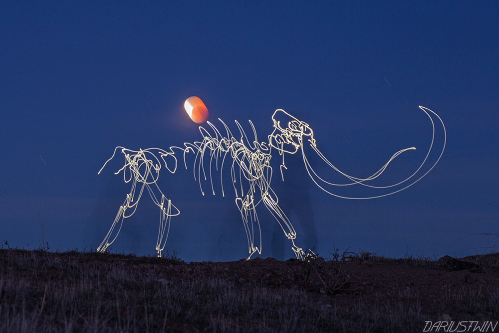 Mammoth_wooly_iceage_lightfossil_skeleton_dariustwin_lightpainting.jpg