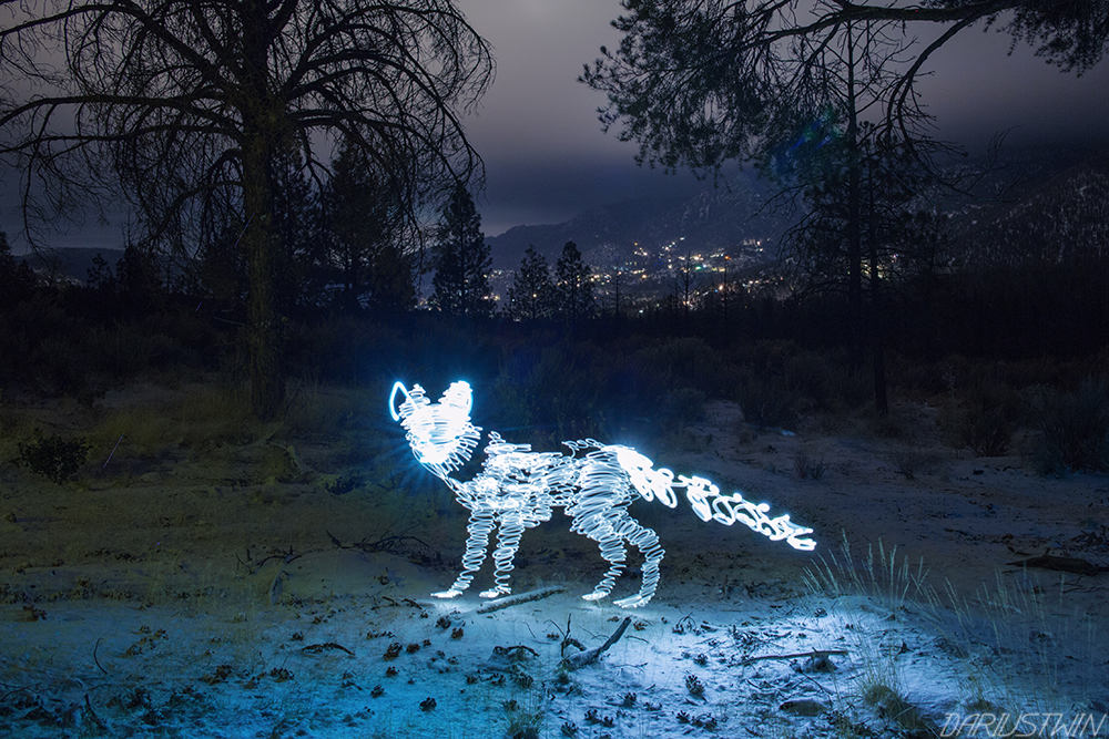 SnowFox_DT.jpgsnowfox_lightfox_firefox_lightpainting_dariustwin_photography_art_mountains_snow_winter_slowshutter.jpg