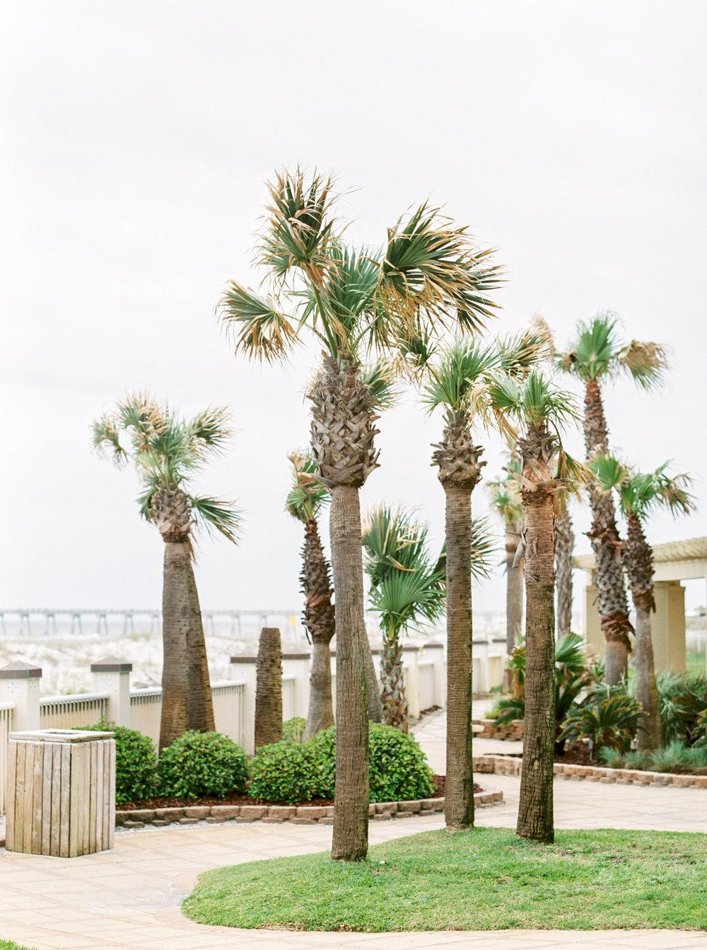 William & Auburn - Pensacola Beach, Florida