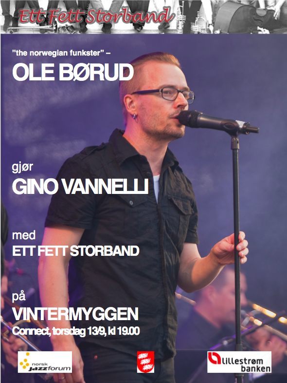 Plakat vintermyggen 2012