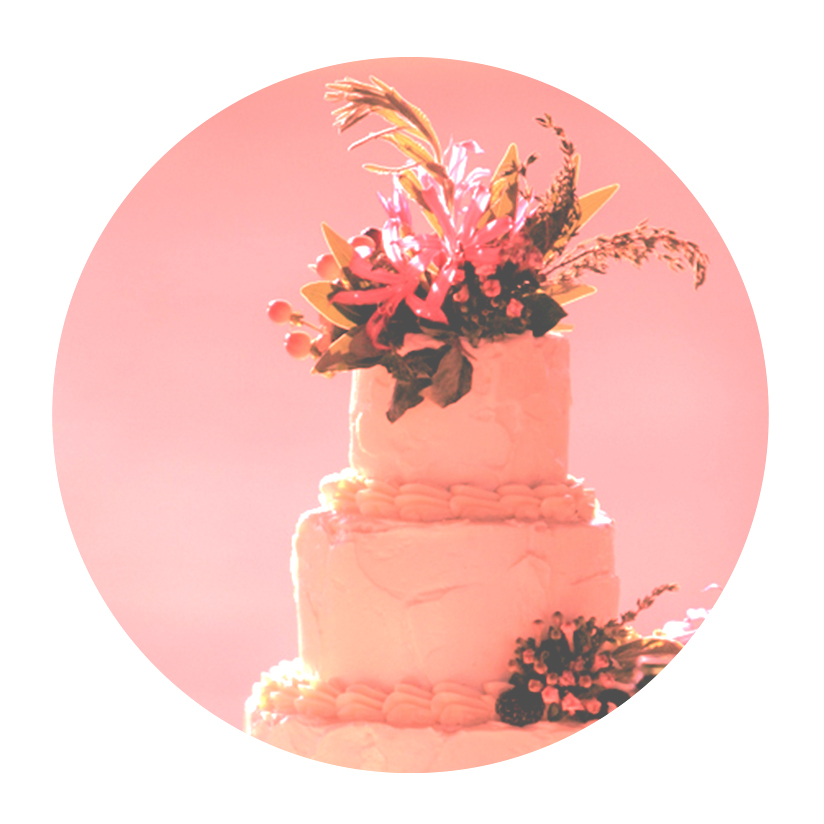 Cory-Cakes-Bride-Stories-color-sheen.jpg