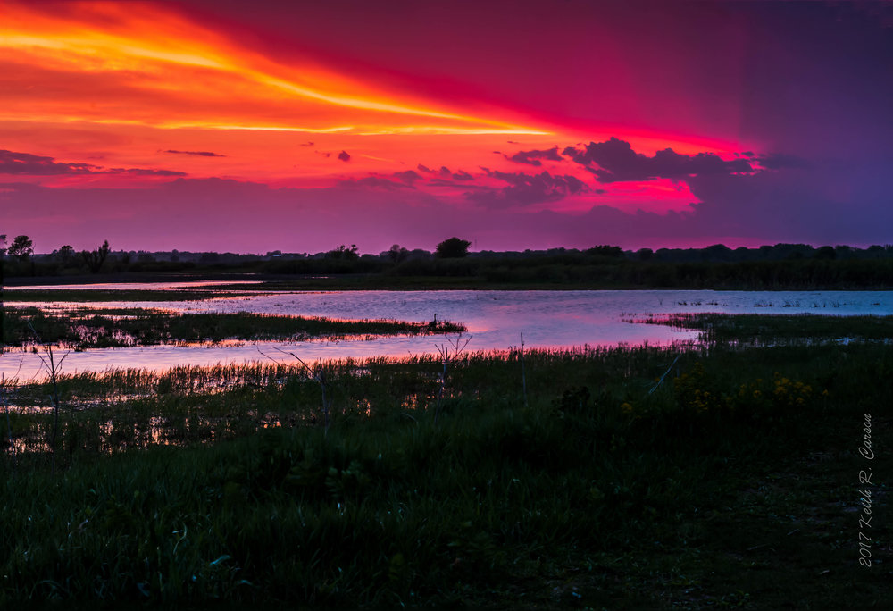 big marsh.jpg