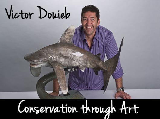 victor-douieb-oceanic-whitetip-shark-sculpture-5.png