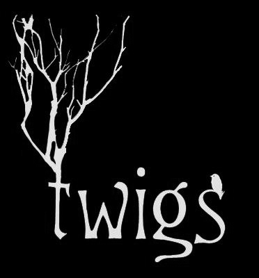 Twigs Hair Salon