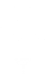 Kool Baby Brotha Band