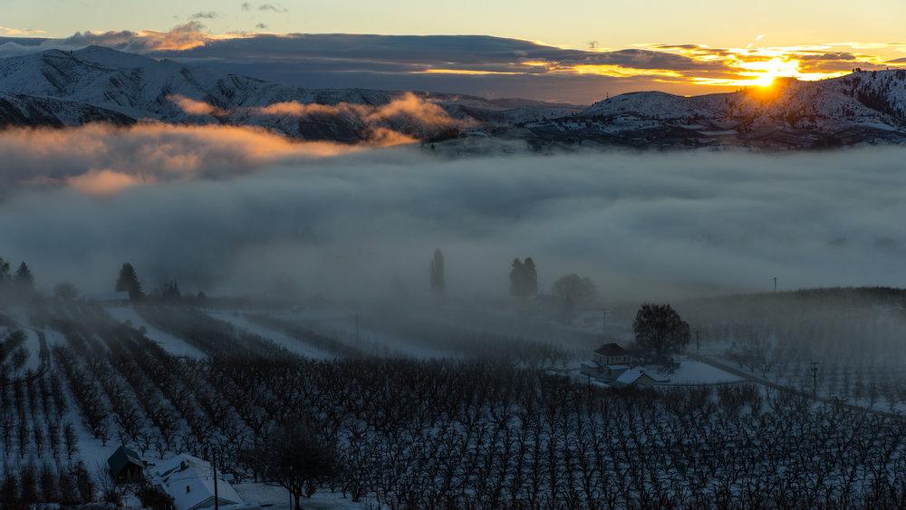 1Cashmere Sunrise-2.jpg