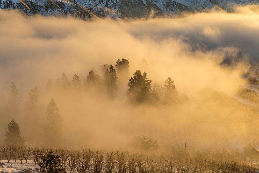 1Cashmere Sunrise-32.jpg