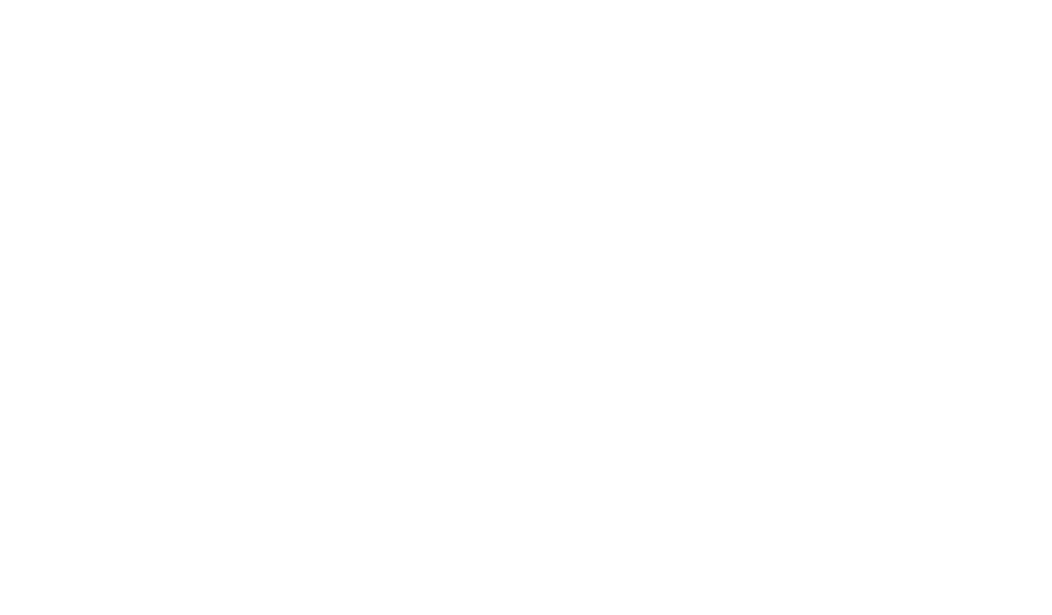 Business in the Streets
