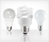 light bulbs.png