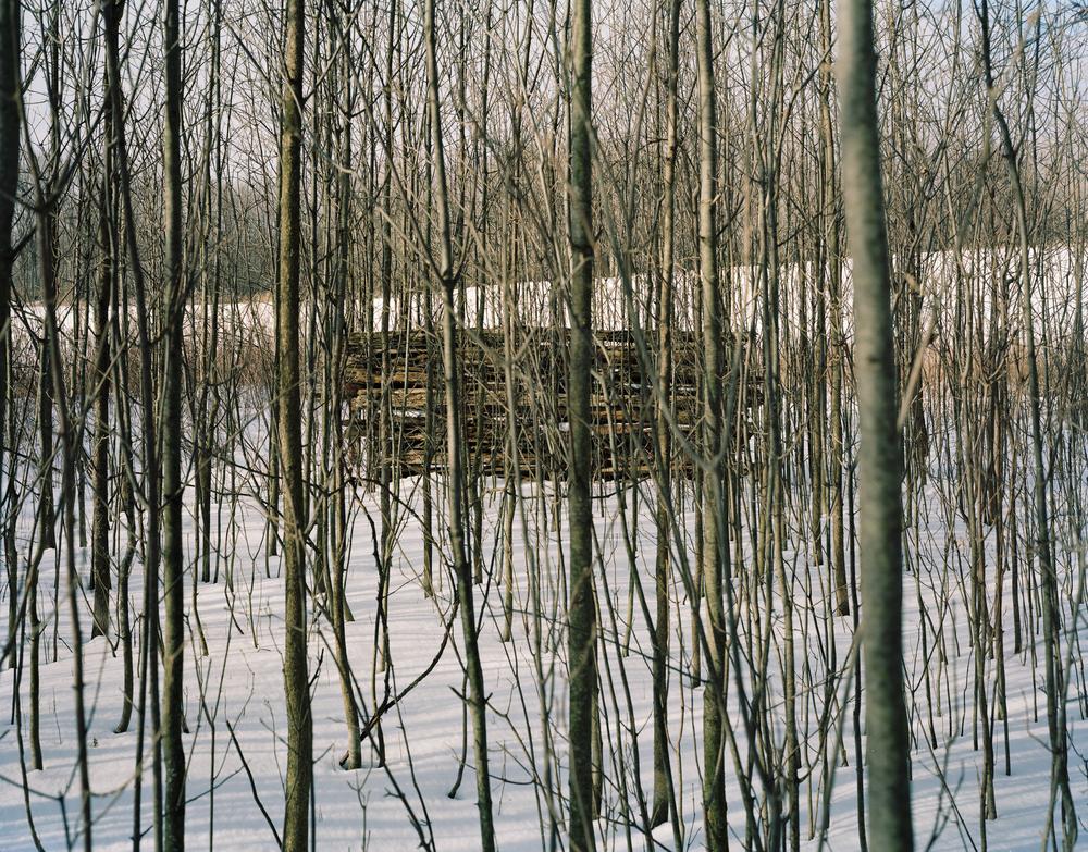 Cedar Rail Wall