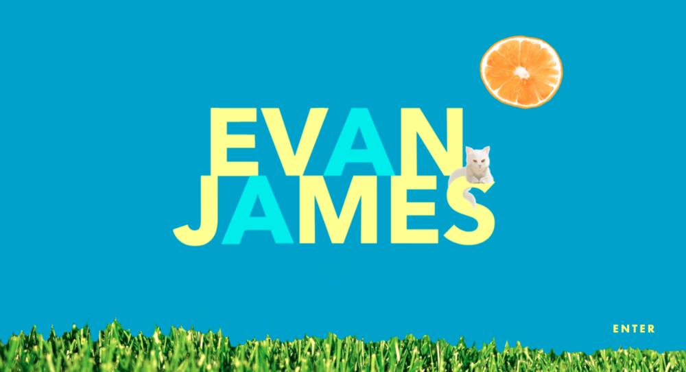 Illustration and site for Evan James:  evanjameswriter.com
