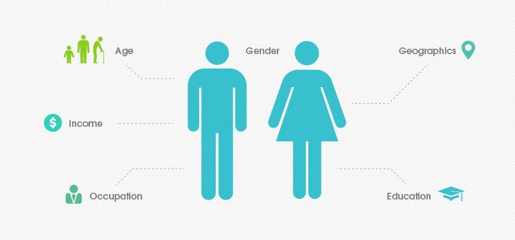 VisionScopeMedia-Demographics