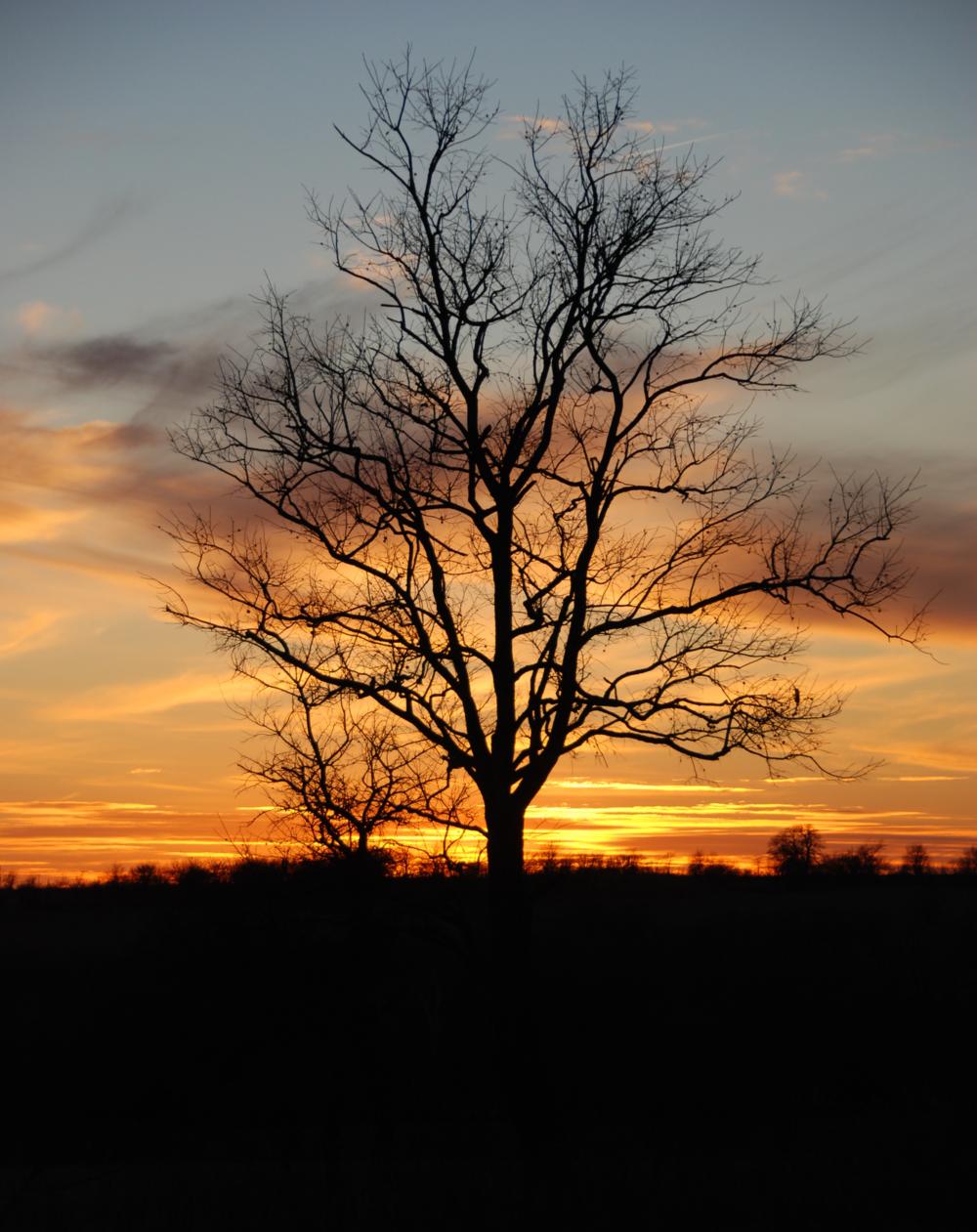 sunset 4 katharine.JPG
