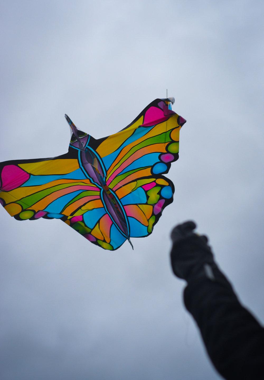 kite-darkened_24162355789_o.jpg