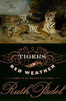 TigersinRedWeather