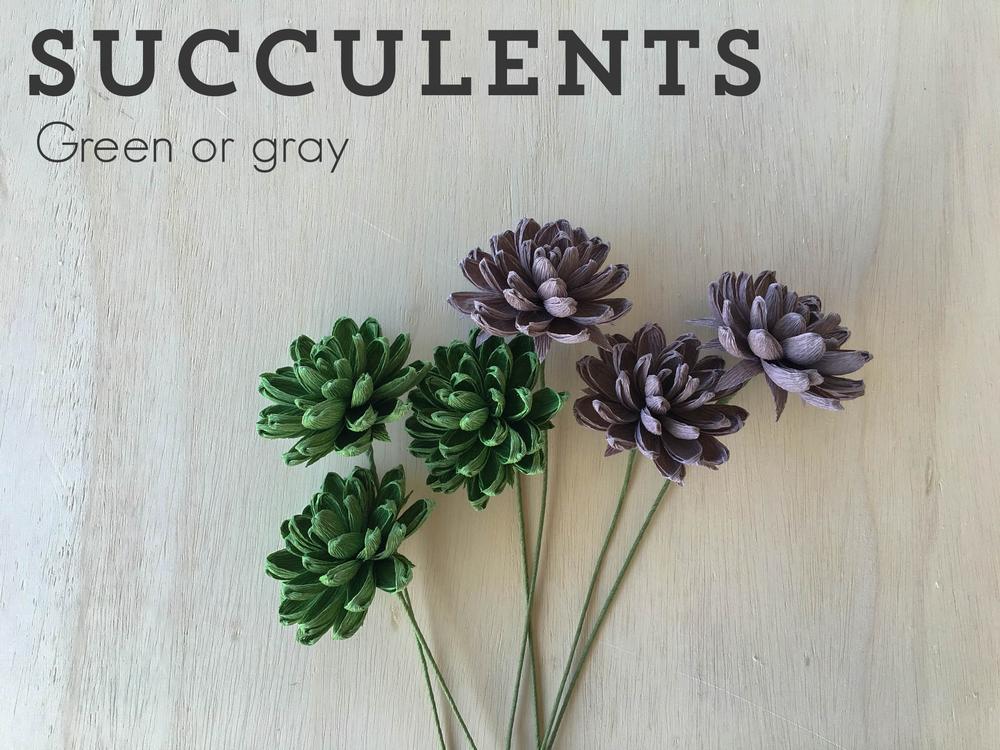 succulents-paper-flowers.png