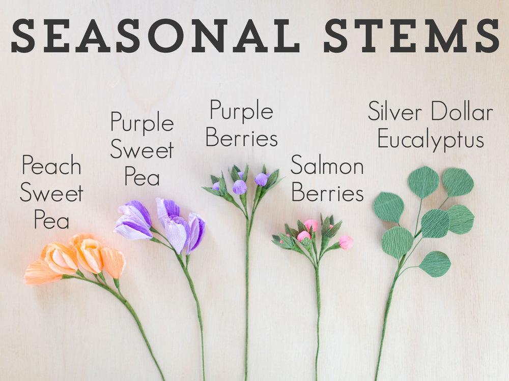 Seasonal-Stems2.jpg