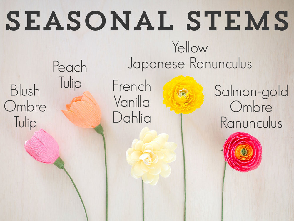 Seasonal-Stems1.jpg