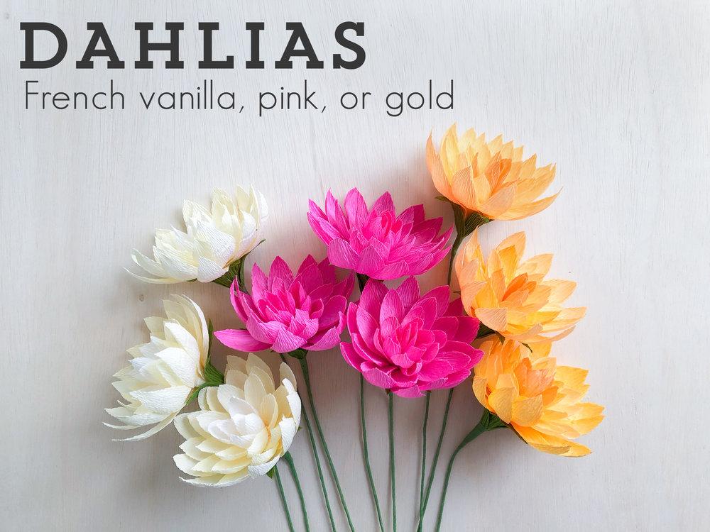 Dahlias.jpg