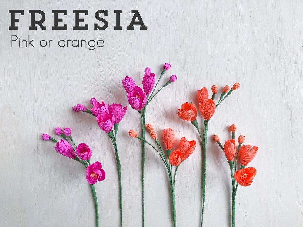 Freesia.jpg