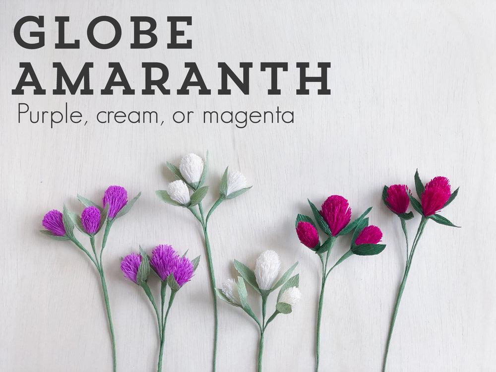 Globe-amaranth.jpg