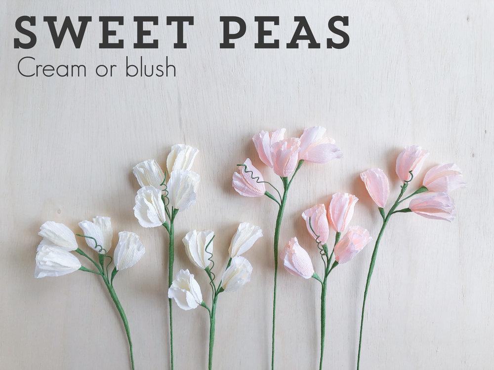 Sweet-peas.jpg