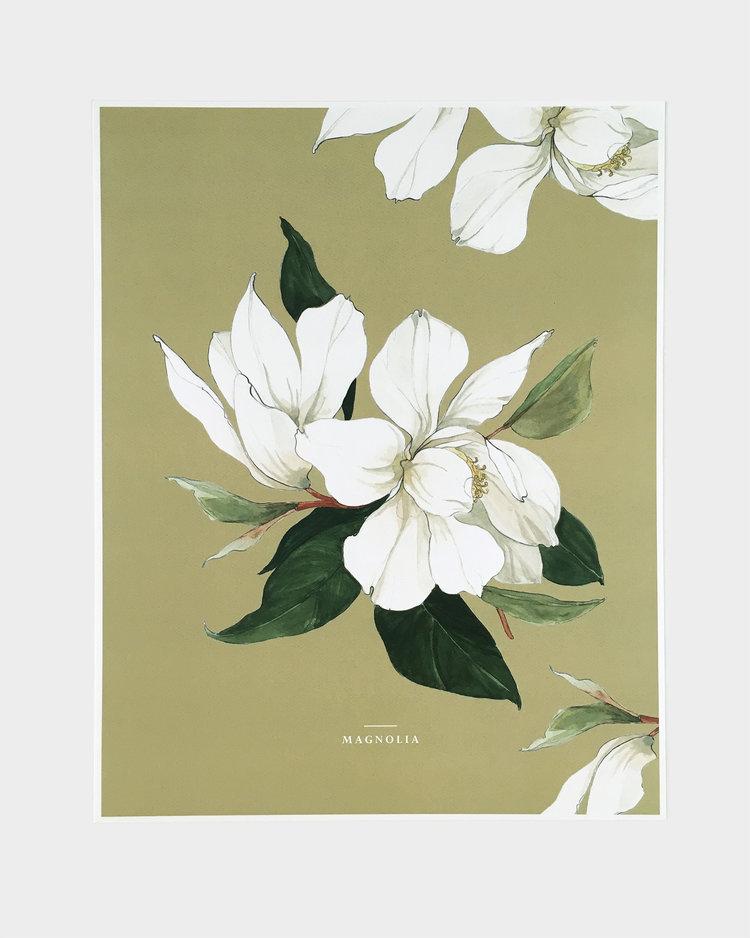 Magnolia_11x14.jpg