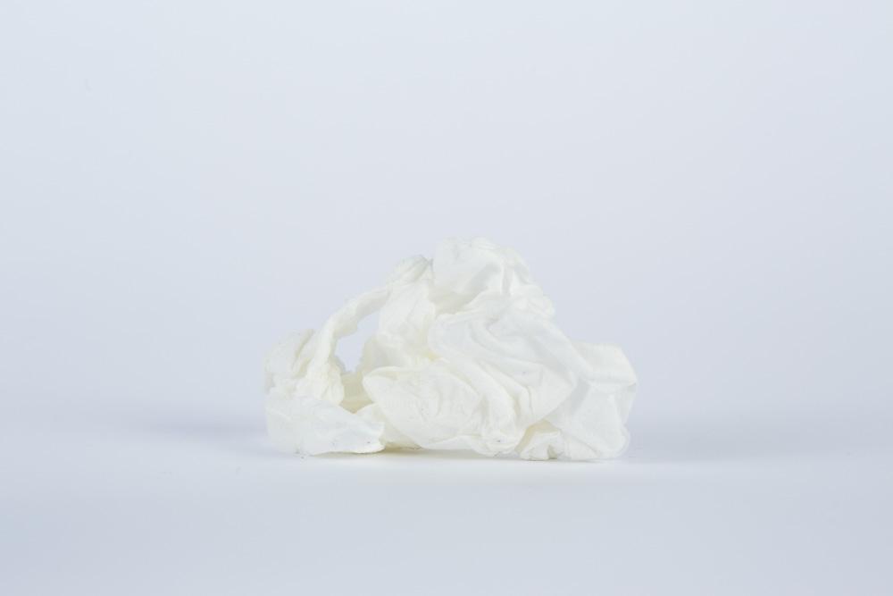 Julia Vandenoever - tissue 1, Archival Inkjet print , 2017