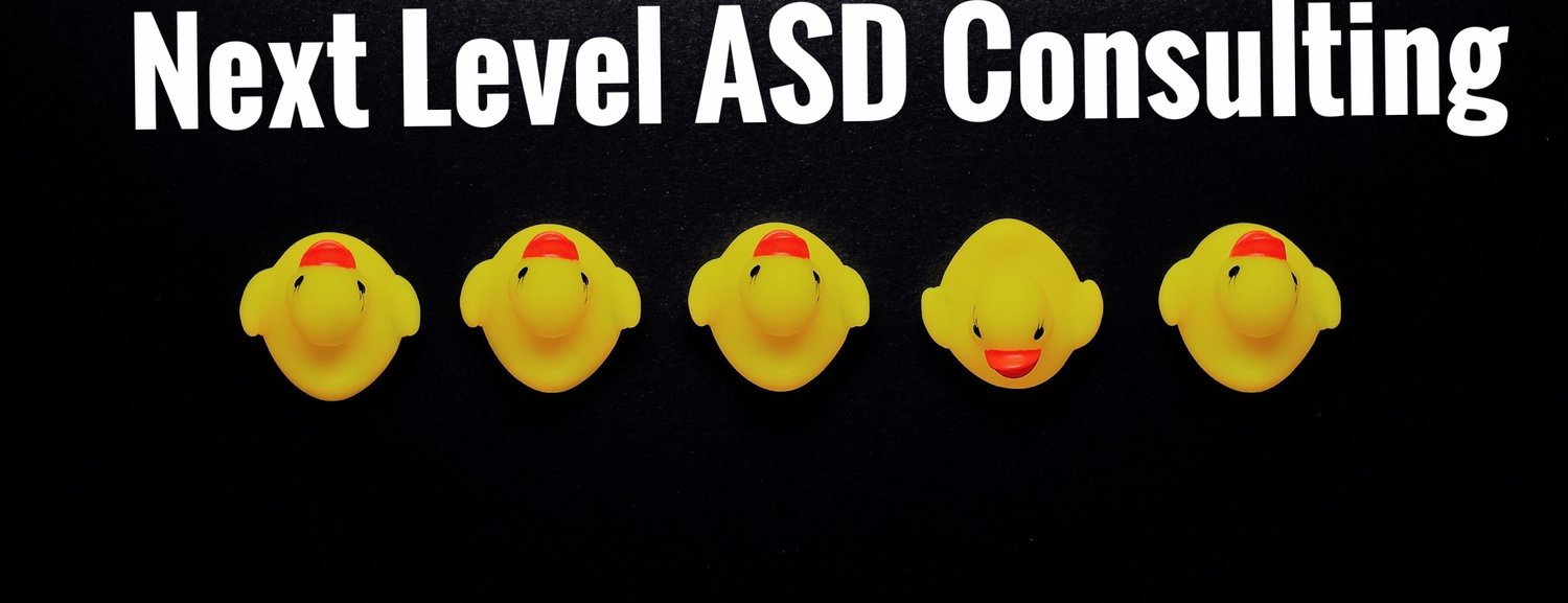 Next Level ASD Consulting Services