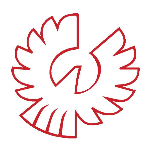 Phoenix-School-Logo-Web-hawk-only-red.png