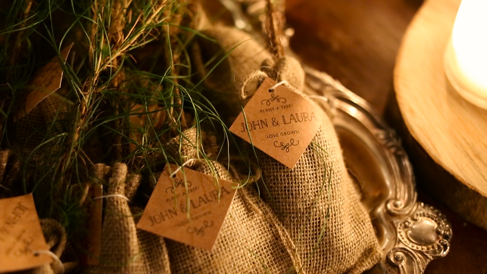 What unique favors: individual trees for guests to bring home and plant in the ground.