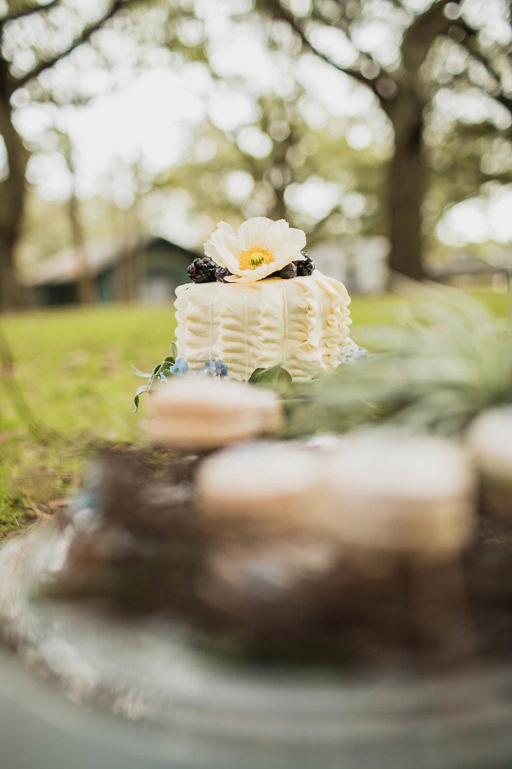 New Orleans Wedding Cake - Bride Film