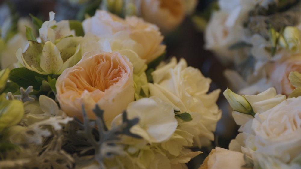 Roosevelt Hotel New Orleans Wedding - Bride Film