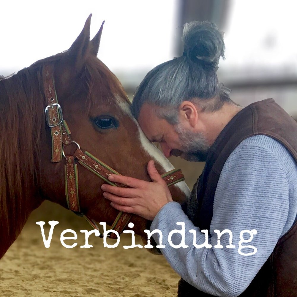 pferde energiearbeit luxemburg.JPEG