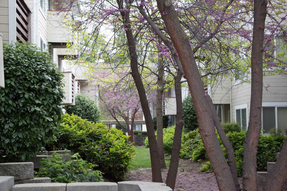 Morrison Park Apartments 1099 S. Dale St.